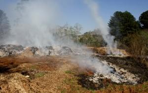 Local em que são depositados galhos e folhas triturados e secos foi atingido pelo fogo, totalmente controlado só nesta quinta