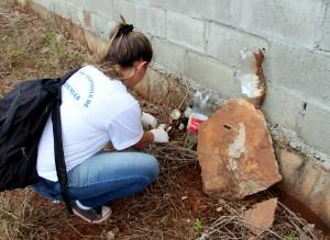 Agente de endemias armazena objetos que acumulam água encontrados em terrenos baldios, uma das condições mais propícias à proliferação de larvas e mosquitos