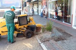 Prefeitura mantém equipe para retirada de tocos e coleta de galhos